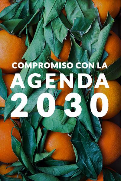 VISAMA, una gestión comprometida con la Agenda 2030 de la economía circular y ODS.